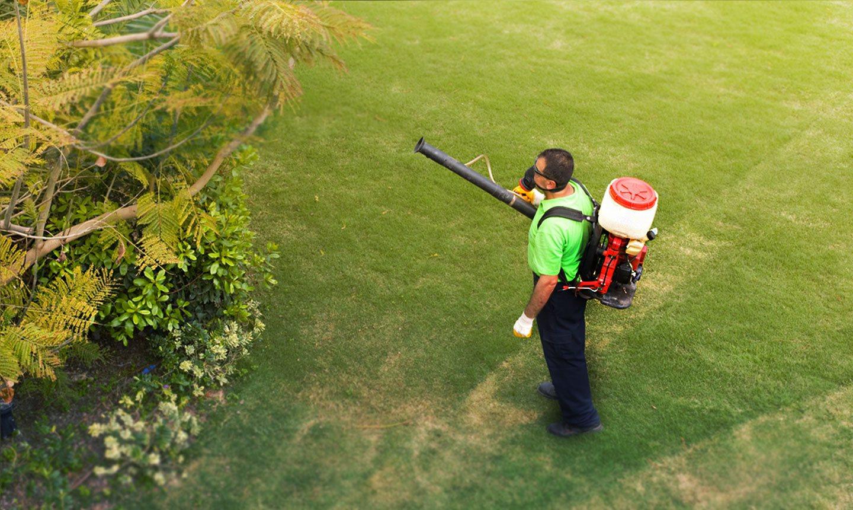 Pest Control & Mosquito Fogging